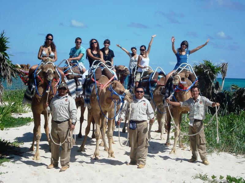 Maroma Camel safari