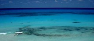 Explore the ocean in the Riviera Maya